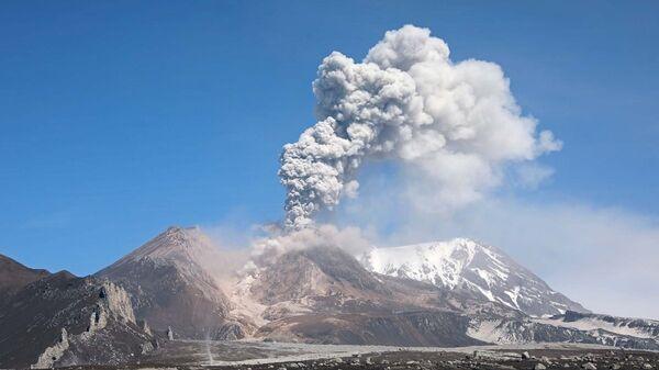 Выброс пепла на вулкане Шивелуч на Камчатке