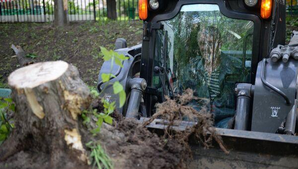 Работники коммунальных служб убирают поваленные деревья в одном из дворов Москвы