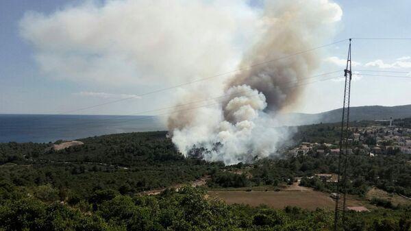 Лесной пожар в Черногории. Архивное фото