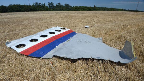 Обломки потерпевшего крушение малайзийского Boeing 777 в Донецкой области