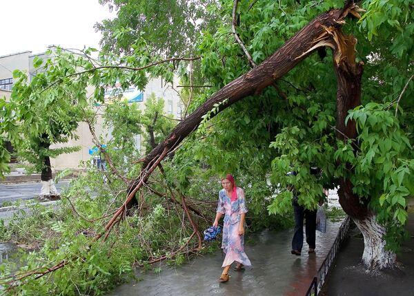 Последствия урагана