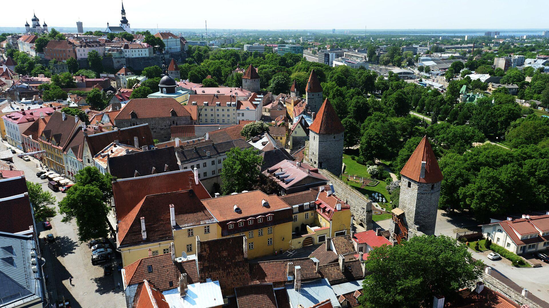 Вид на Старый город с верхушки церкви Олевисте - самого высокого строения средневековой Европы - РИА Новости, 1920, 29.06.2021