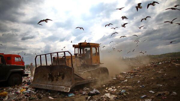 Рекультивация трех мусорных полигонов в Подмосковье завершится в 2018 году