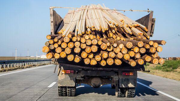 Грузовик, перевозящий дрова, на трассе