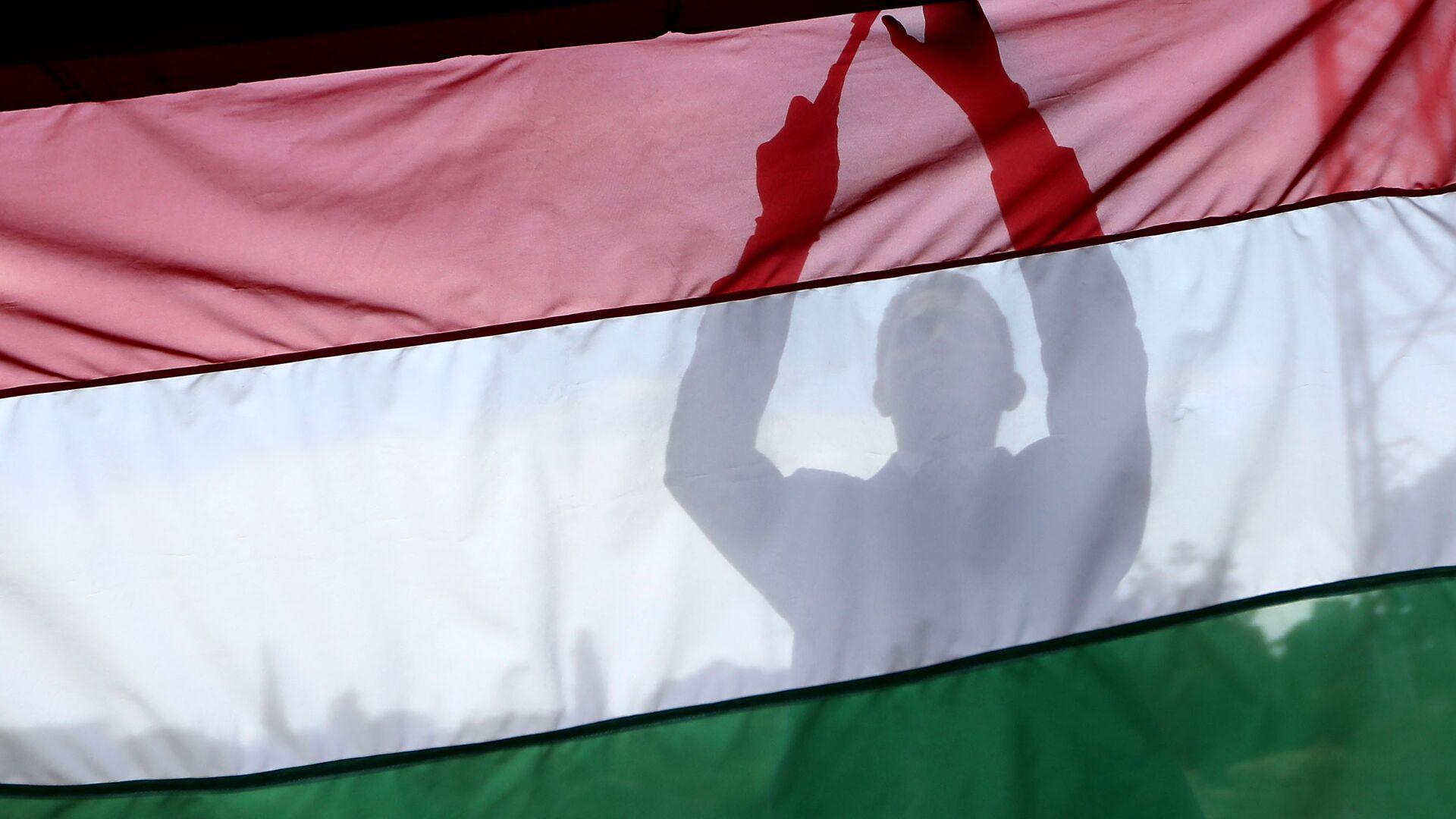 Мужчина на фоне флага Венгрии  - РИА Новости, 1920, 08.07.2021