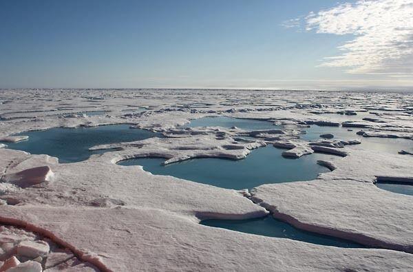 Через Северный полюс теперь можно проплыть из-за таяния льдов