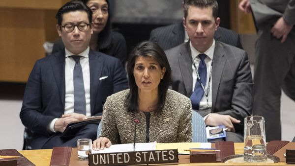 Посол США в ООН Никки Хейли выступает на заседании Совета Безопасности. Архивное фото