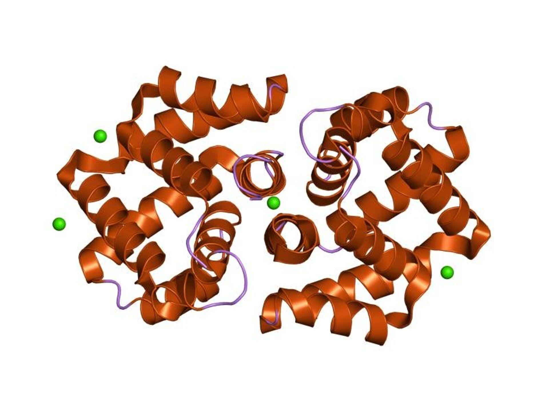 Структура белка Fel d I - РИА Новости, 1920, 16.09.2021