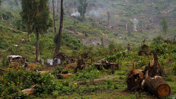 Ситуация в Демократической Республике Конго. Архивное фото