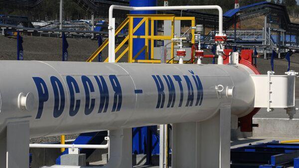Нефтеперекачивающая станция №21 ОАО АК Транснефть в Сковородино, где сегодня состоялось открытие российского участка нефтепровода Россия - Китай