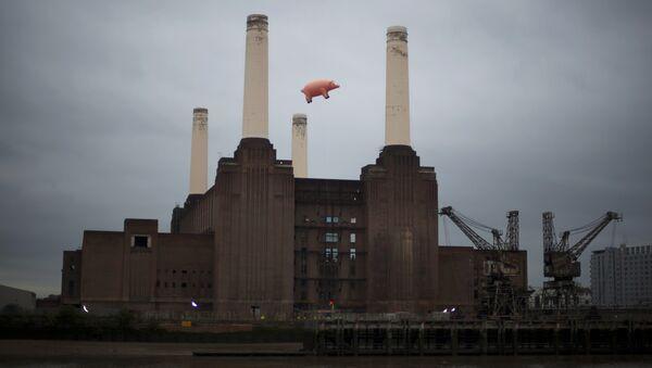 Надувная свинья над электростанцией Battersea в Лондоне. Архивное фото
