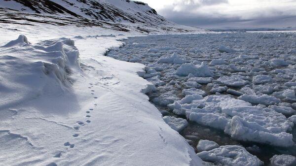 В Арктике. Архивное фото