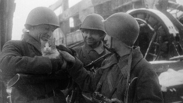 Мирные воспоминания. Сталинград, 1943 год. Архивное фото