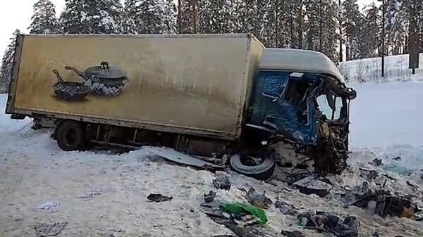 Кадры с места ДТП в Ленобласти, где погибли девять человек