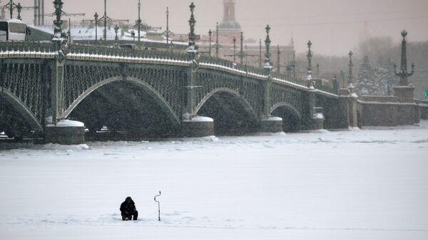 В Санкт-Петербурге. Архивное фото