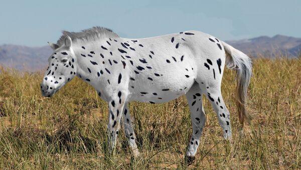Древняя лошадь Пржевальского в представлении художника