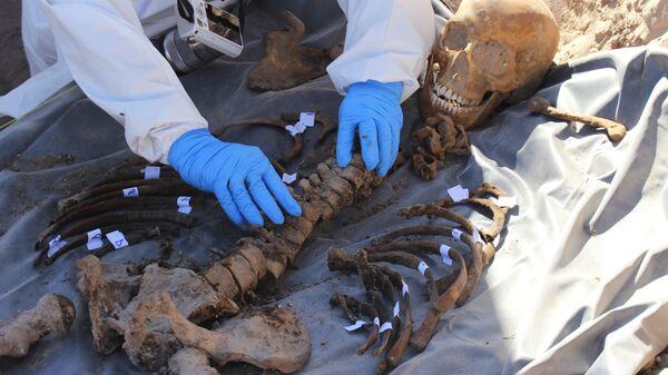 Неопознанные останки обнаруженные в Мексике в безымянном захоронении. Архивное фото