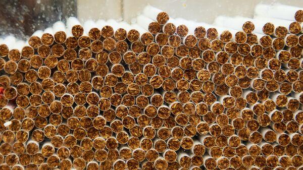 Производство сигарет на фабрике АО Филип Моррис Ижора в Ленинградской области