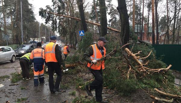 Дорожные службы ликвидируют последствия урагана. 21 апреля 2018 года