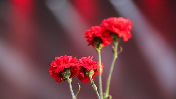 «Память поколений» проведет акцию «Красная гвоздика» во всех городах России