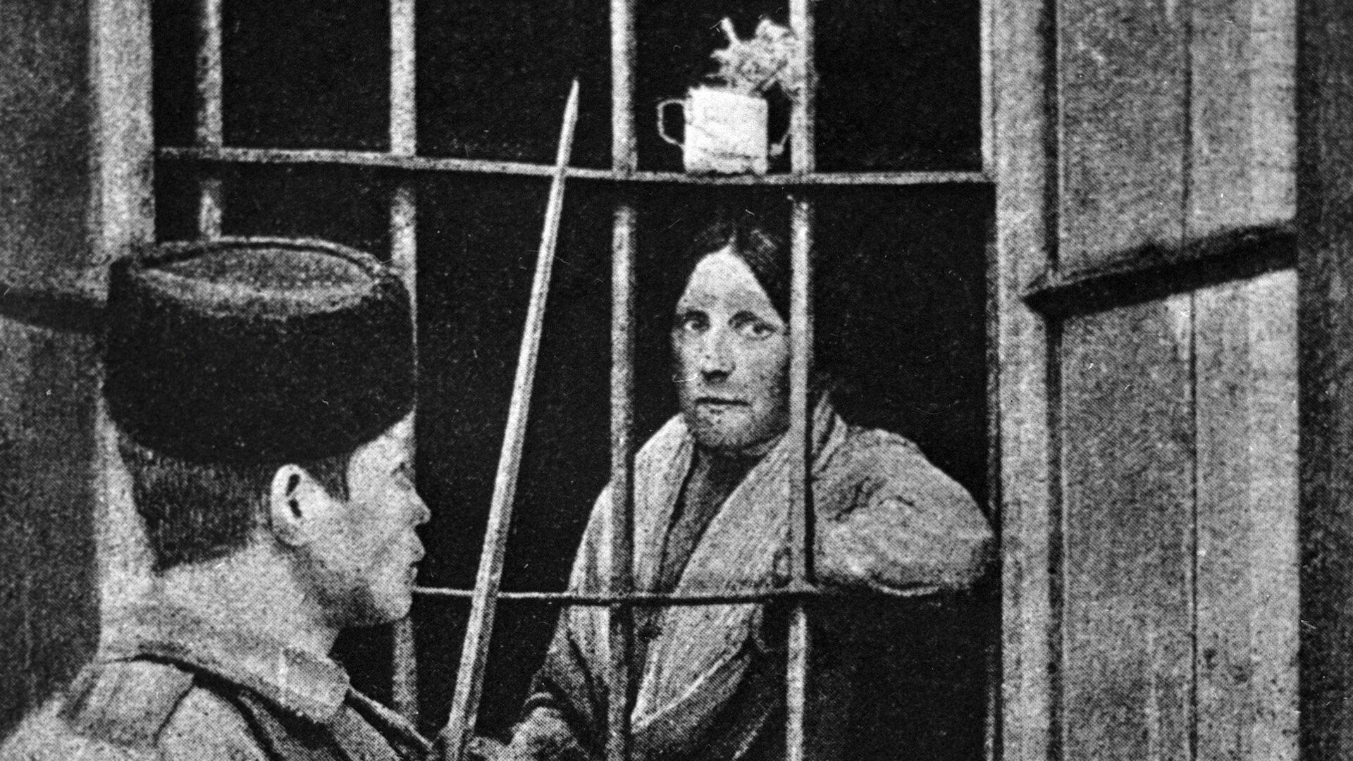 Эсерка Мария Спиридонова за решеткой тюремной больницы. 1 февраля 1905 года - РИА Новости, 1920, 29.01.2021