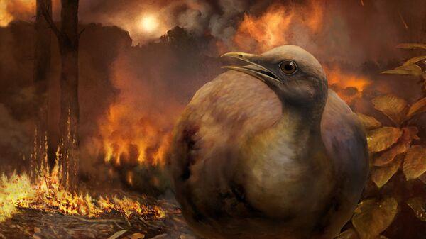 Так художник представил себе сухопутную птицу в лесу после падения астероида