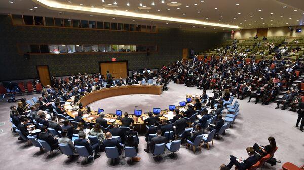 На заседании Совета Безопасности ООН в Нью-Йорке. Архивное фото