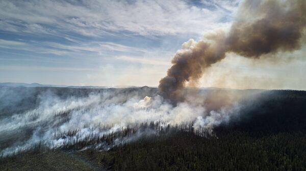 Лесные пожары в Кабанском районе Бурятии