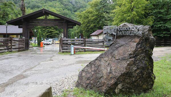 На страже гор: волонтеры Экодемии закончили первую смену в Кавказском заповеднике