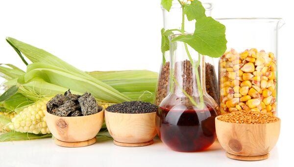 Концептуальная фотография биотоплива