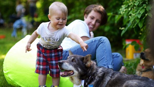 В Сокольниках пройдет выставка собак из приюта