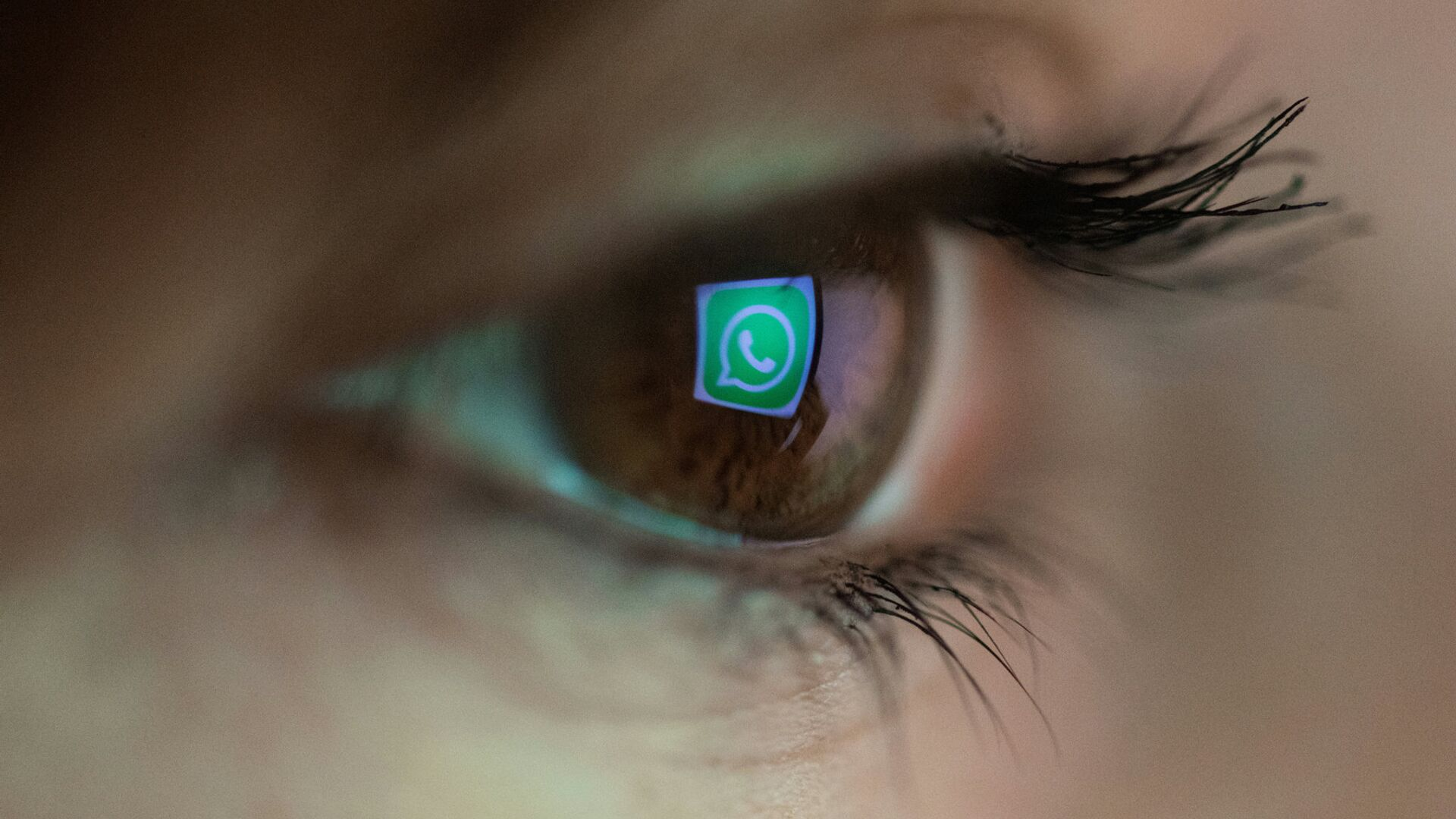 Логотип мессенджера WhatsApp - РИА Новости, 1920, 16.09.2021