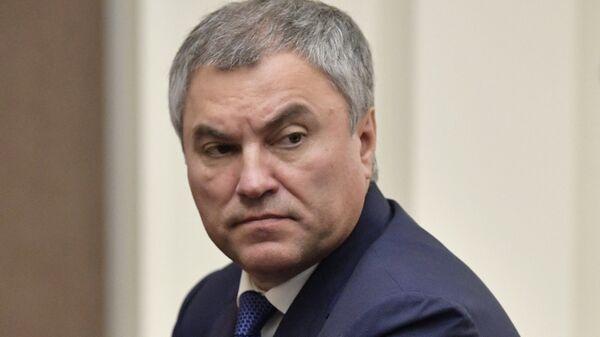 Председатель Государственной Думы России Вячеслав Володин. Архивное фото