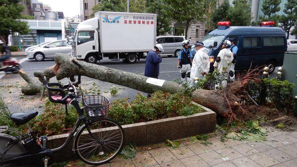 Ликвидация последствий тайфуна Джеби в Осаке, Япония
