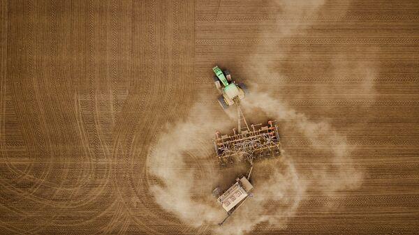 Сев озимых зерновых в Краснодарском крае