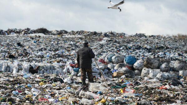Полигон твёрдых бытовых отходов. Архивное фото