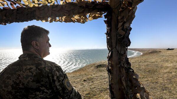 Президент Украины Петр Порошенко во время учений Вооруженных сил Украины