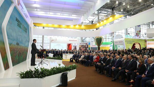 Премьер-министр РФ Д. Медведев на открытии 20-й агропромышленной выставки «Золотая осень»