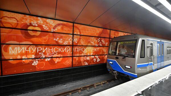 Станция Мичуринский проспект