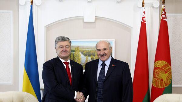 Президент Белоруссии Александр Лукашенко во время встречи с президентом Украины Петром Порошенко. Архивное фото