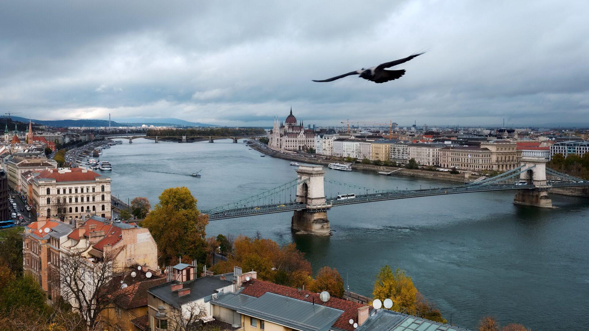 Река Дунай в Будапеште - РИА Новости, 1920, 28.09.2021