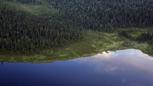Вид с борта вертолета на тундру в Мурманской области
