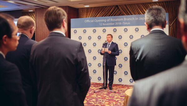 Первый заместитель генерального директора - директор Блока по развитию и международному бизнесу Госкорпорации Росатом Кирилл Комаров
