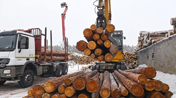 Линия сортировки леса