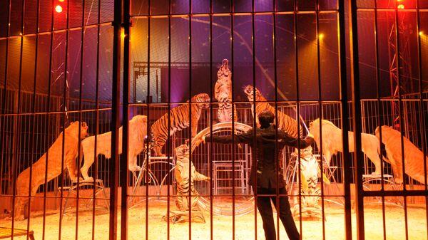 Дрессировщик в цирке