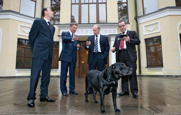 Владимир Путин приобрел для своего лабрадора Кони ошейник, оснащенный системой ГЛОНАСС