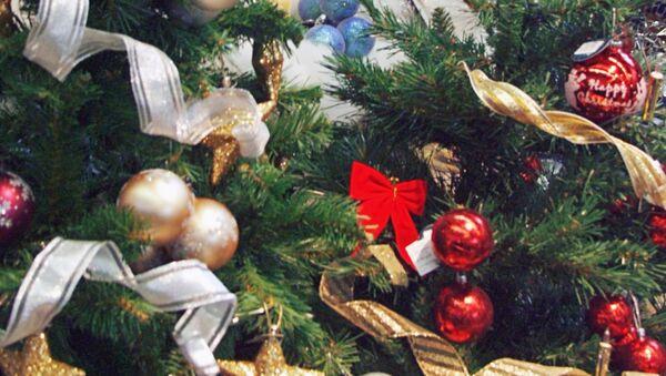 Самый известный австрийский рождественский базар открылся в Вене