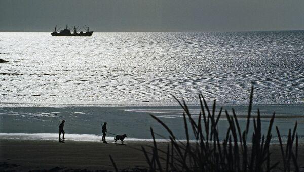 Значительной части флоры и фауны Океании грозит полное вымирание
