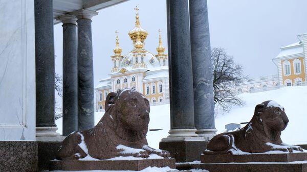 Скульптуры львов Воронихинских колоннад и музей Церковный корпус Большого Петергофского дворца
