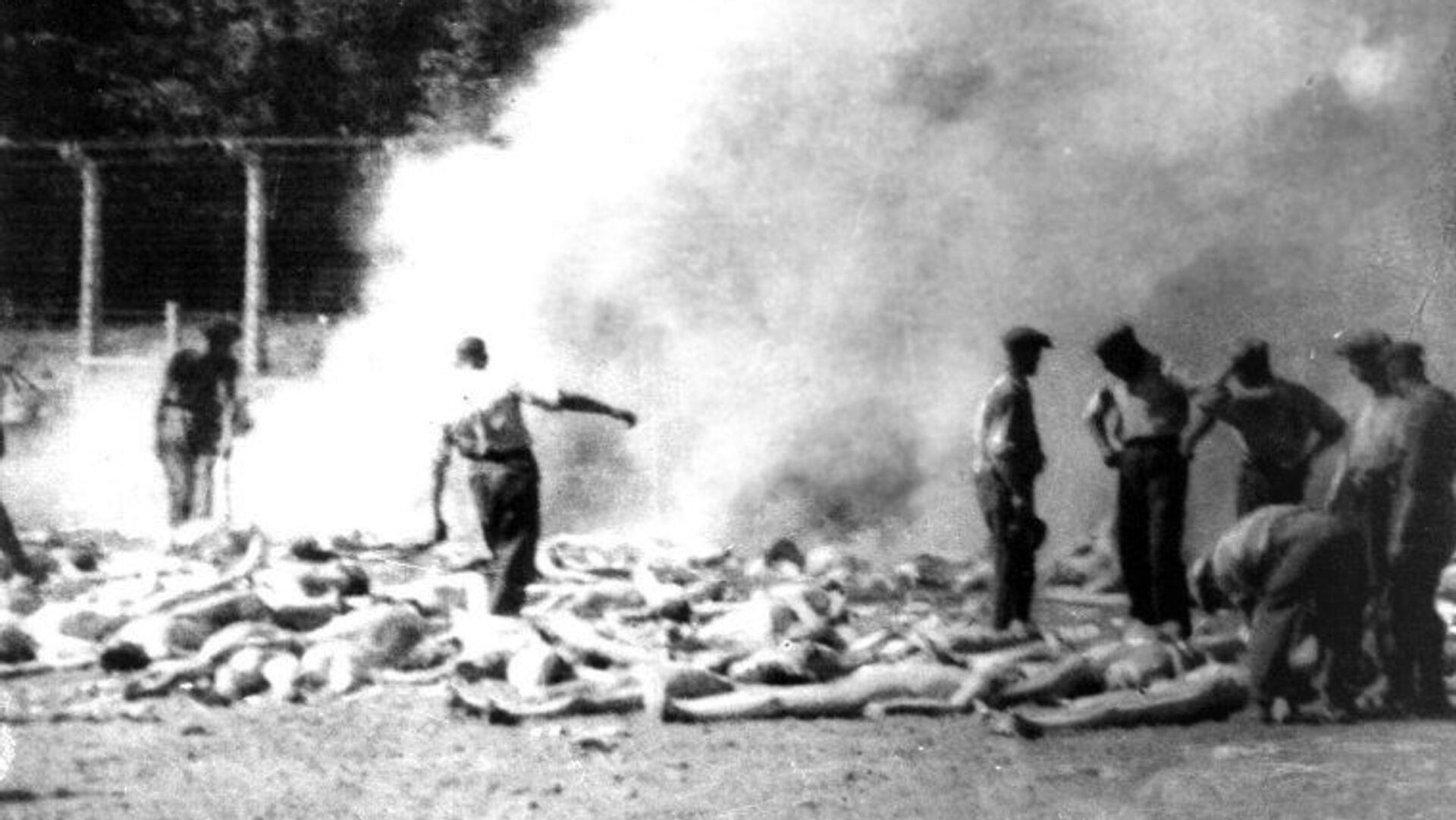 Члены зондеркоманды сжигают тела убитых газом заключенных Освенцима - РИА Новости, 1920, 11.05.2020